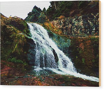 Waterfall By Stiles Cove Path Wood Print