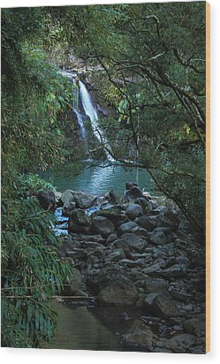 Wood Print featuring the photograph Waterfall  by Cathy Donohoue
