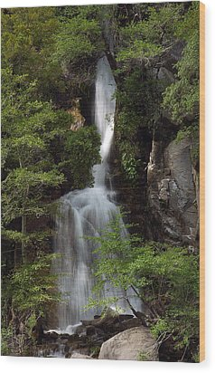 Wood Print featuring the photograph Waterfall by Gary Rose