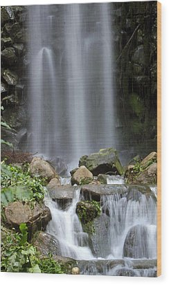 Wood Print featuring the photograph Waterfall In Singapore by Shoal Hollingsworth