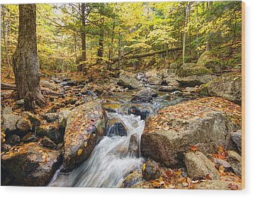 Waterfall In The Fall Nh Wood Print by James Steele