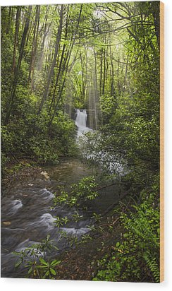 Waterfall In The Forest Wood Print by Debra and Dave Vanderlaan