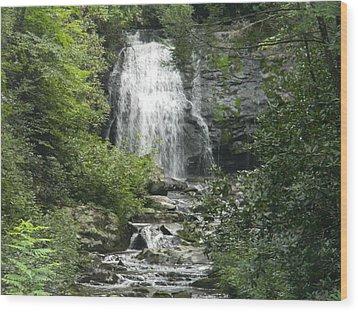 Waterfall Wood Print by Linda Brown