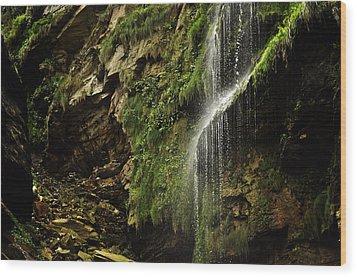 Waterfall Wood Print by Mariusz Zawadzki