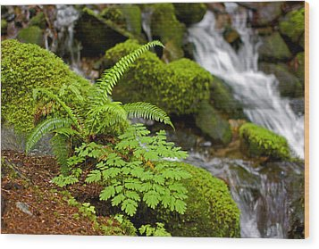 Waterfall Mount Rainier National Park Wood Print