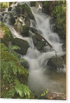 Wood Print featuring the photograph Waterfall Mt Rainier National Park by Bob Noble Photography