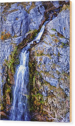 Waterfall-mt Timpanogos Wood Print by David Millenheft
