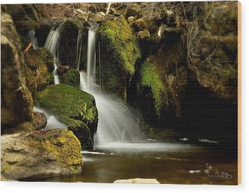 Waterfall - Naramata Dsc0043 Wood Print by Guy Hoffman