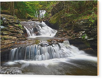 Waterfall Oasis Wood Print by Frozen in Time Fine Art Photography
