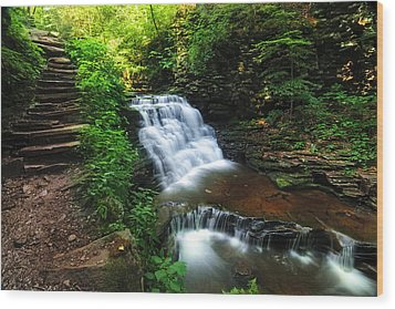 Waterfall Paradise With Stone Stairway Wood Print by Aaron Smith