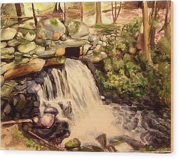 Waterfall Sharon Audubon 12x16 Wood Print by Nicolas Bouteneff