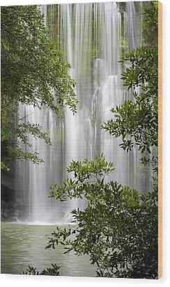 Waterfall Through Trees Wood Print by Juan Carlos Vindas