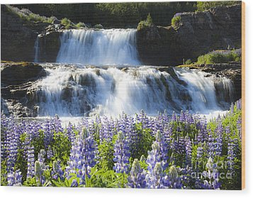 Waterfall With Flowers Wood Print