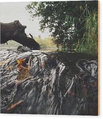 Wood Print featuring the photograph Waterfalls Beginnning by Nikki McInnes