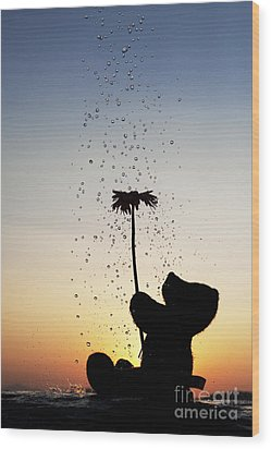 Watering A Flower Wood Print by Tim Gainey
