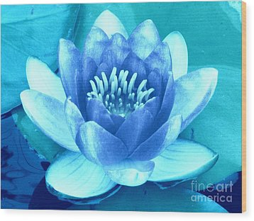 Waterlily Blue 2 Wood Print by Margaret Newcomb
