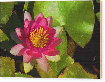 Waterlily Impression In Fuchsia And Pink Wood Print