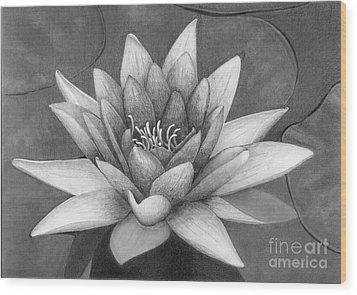 Waterlily Wood Print by Nicola Butt