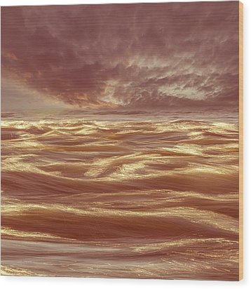 Waterscape Number Seven Wood Print by Bob Orsillo