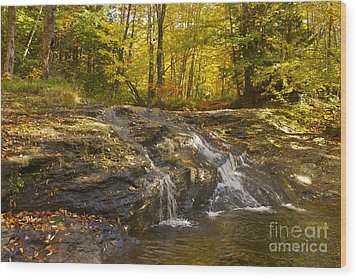 Waterville Waterfall Revisited Wood Print by Alice Mainville