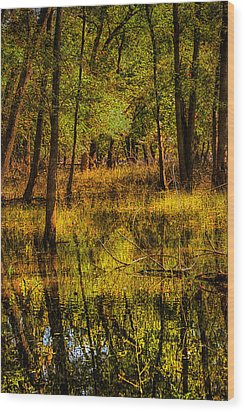 Wood Print featuring the photograph Watery Ramble by Kimberleigh Ladd