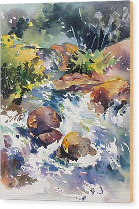 Watery Respite Wood Print by Rae Andrews