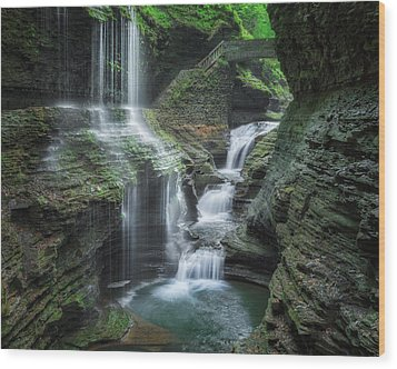 Watkins Glen Wood Print by Bill Wakeley