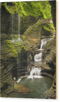 Watkins Glen Falls Wood Print by Anthony Sacco