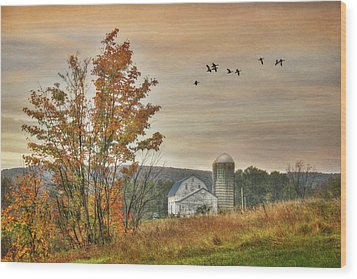 Watkins Glen Farm Wood Print by Lori Deiter