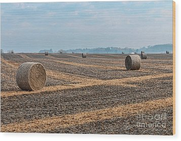 Wood Print featuring the photograph Waupaca Straw Rolls by Trey Foerster