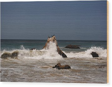 Wood Print featuring the photograph Waves In Malibu by Robert  Moss