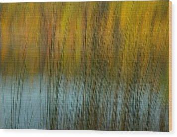 Wavy Wood Print by Randy Pollard
