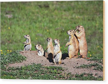 We Are Family Wood Print by Lana Trussell