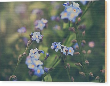 We Lay With The Flowers Wood Print by Laurie Search