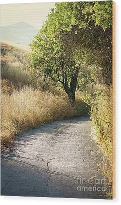 Wood Print featuring the photograph We Will Walk This Path Together by Ellen Cotton