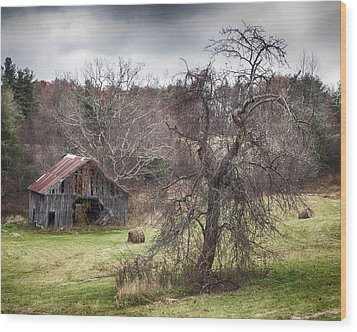 Weathered Wood Print by Alan Raasch