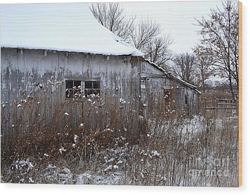Weathered Barns In Winter Wood Print