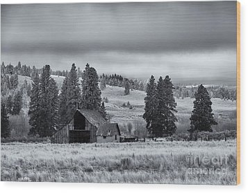 Weathered Beneath The Storm Wood Print by Mike  Dawson