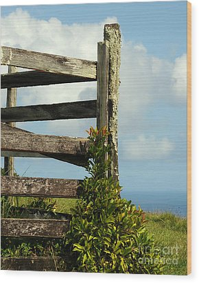 Weathered Fence Wood Print by Vivian Christopher