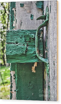 Weathered Green Paint Wood Print by Paul Ward