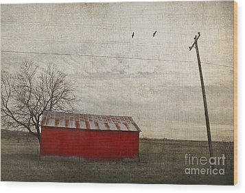 Weathered Red Barn Wood Print by Elena Nosyreva