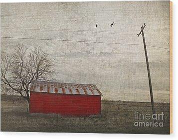 Weathered Red Barn Wood Print
