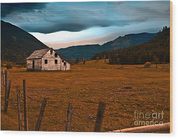 Wood Print featuring the photograph Weathered by Sandi Mikuse