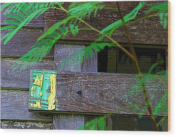 Weathered Wood And Old Paint Wood Print by Linda Phelps