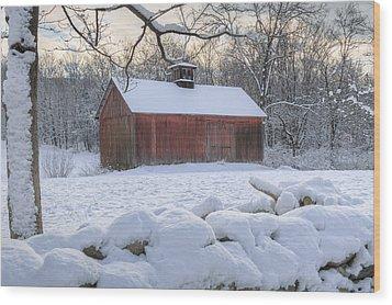 Weathering Winter Wood Print by Bill Wakeley