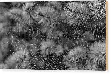 Web Drops Wood Print by Dennis Bucklin