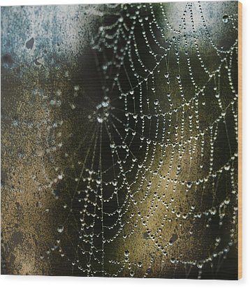 Web In The Mist Wood Print