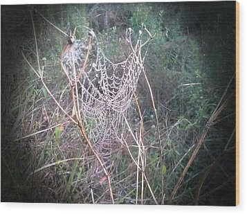 Web Of Dew Wood Print by Chasity Johnson