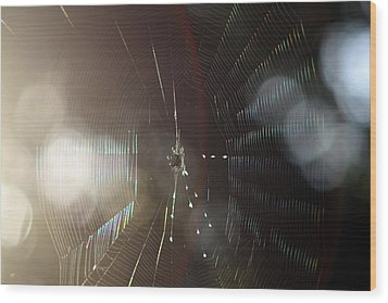 Wood Print featuring the photograph Web Of Flares by Greg Allore