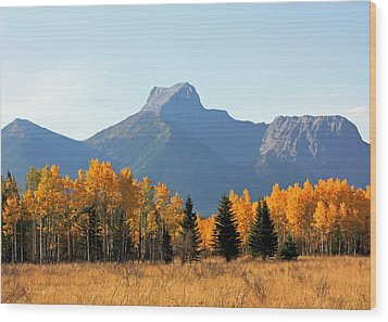 Wedge Mountain And Aspen Wood Print